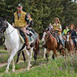 Natura a Cavallo: in armonia con l'ambiente naturale