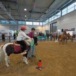 Pony city - Fiera Cavalli a Roma 2020